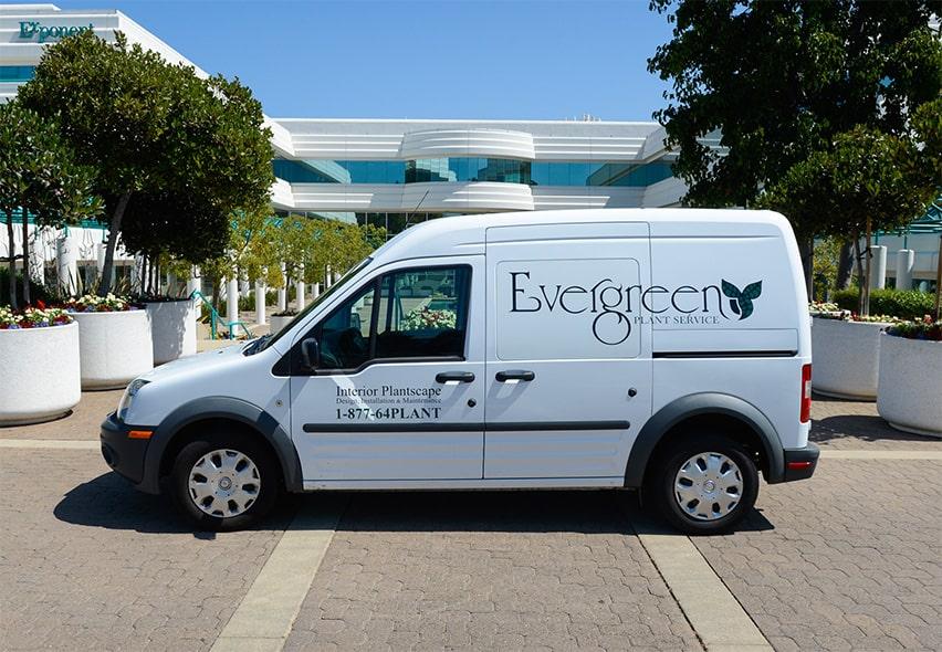 evergreen van