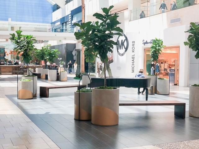 mall Interior plant service